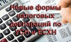 Новые-формы-налоговых-деклараций-по-УСН-и-ЕСХН