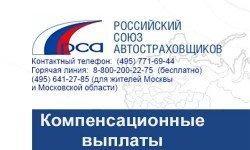 Компенсационные-выплаты-РСА