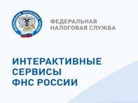 Интерактивные-сервисы-ФНС-России