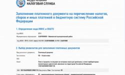 Фото: Уплата госпошлины на сайте nalog.ru