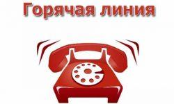 Горячая линия кадастрой палаты Ивановской области